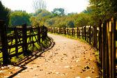 Wooden Fences — Stock Photo