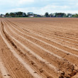 Plowed field — Stock Photo #18515135