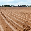 Plowed field - Stock Photo