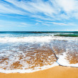 Sandy beach — Stock Photo #19114621
