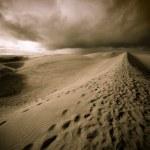 Night in desert — Stock Photo