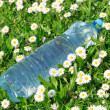 Plastic Drink Bottle — Stock Photo