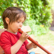 Wooden flute - Stock Photo