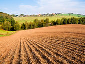 Plowed field — Stockfoto