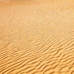 sanddyn — Stockfoto