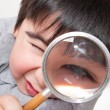 Stock Photo: magnifying glass