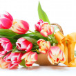 Tulips — Stock Photo #27862129