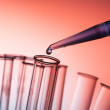 Microbiological pipette in the genetic laboratory — Stock Photo