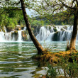 Stock Photo: Waterfall in KrkNational Park is one of Croatinature River