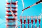 Pipetteer en petrischaal op een glazen tafel in het lab — Stockfoto