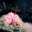 Stock Photo: View of grave with cross