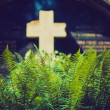 Stock Photo: Fern at the grave with a cross