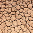 Parched soil during the drought — Stock Photo