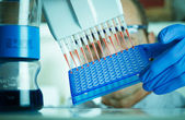 Genetics researcher makes genetic analysis — Stock Photo