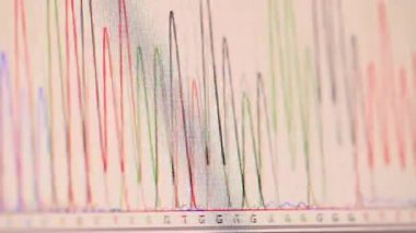 Genetic chromatogram on a computer screen — Stock Video