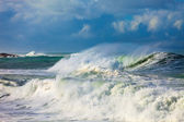 Storm and the big waves of the sea — Stock Photo