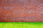 Brick wall with grass lawn — Stock Photo
