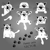Funny cats. — Stock Vector