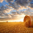 Straw bales — Stock Photo #12703597