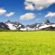 Swiss alps — Stock Photo #12703749