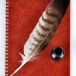 Feather with ink bottle and workbook — Stock Photo #13151492