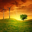 Meadow with wind turbines — Stock Photo #13266266
