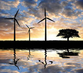 Wind turbines with tree — Stock Photo