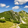 JuliAlps - Slovenia, Europe — Stock Photo #13520232