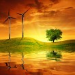 Stock Photo: Meadow with wind turbines