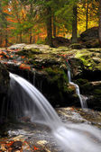 Waterfall in the autumn forest — Stockfoto