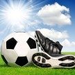 Soccer ball and shoes — Stock Photo #16311037