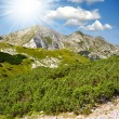 Triglav National Park — Stock Photo #16311291
