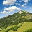 Austrian Alps — Stock Photo #17368253