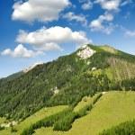 Austrian Alps — Stock Photo #17368253