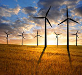 Golden wheat with wind turbines — Stock Photo