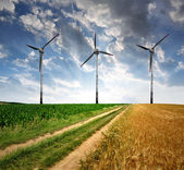 Field way with wind turbines — Foto de Stock