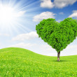 Tree in the shape of heart — Stock Photo #18635659