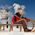 Winter landscape — Stock Photo #18635661