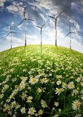 風 turbinens と咲く草原 — ストック写真