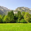 JuliAlps, Slovenia — Stock Photo #18931763