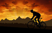 Silhouette of the cyclist — Foto de Stock