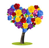 Tree with flowers — Stock Photo