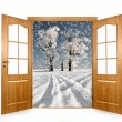 Open the door to the winter landscape — Foto Stock