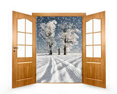 Open the door to the winter landscape — Stock Photo