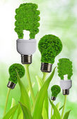 Eco energy bulb — Stock Photo