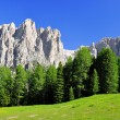 Dolomite peaks, Rosengarten — Stock Photo #22018623