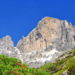 Dolomite peaks, Rosengarten — Stock Photo #22613587