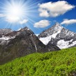 Swiss alps — Stock Photo #23557051