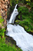 Waterfall of Cavalese — Stock Photo