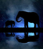 Silhouette elephants — Stockfoto